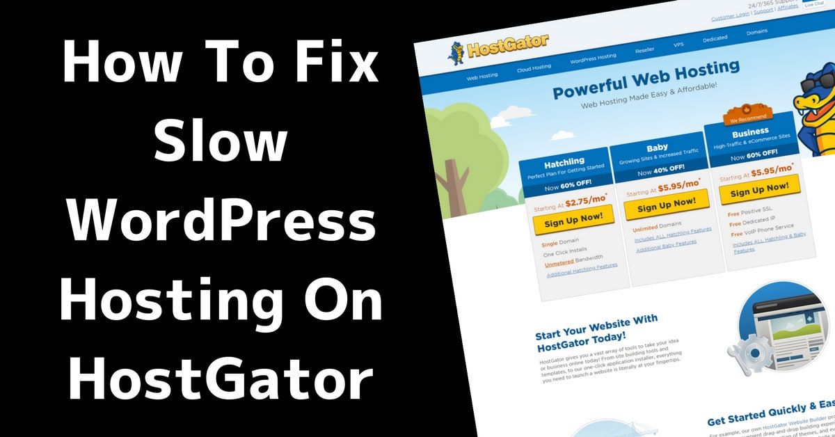 How to Fix Slow WordPress Hosting on HostGator 10