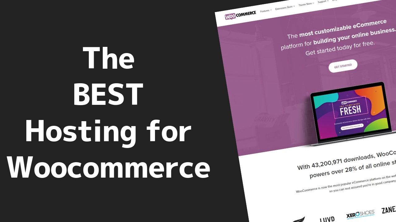 The Fastest (and BEST) Woocommerce Web Hosting 2